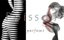 Poisson-parfumes-1b